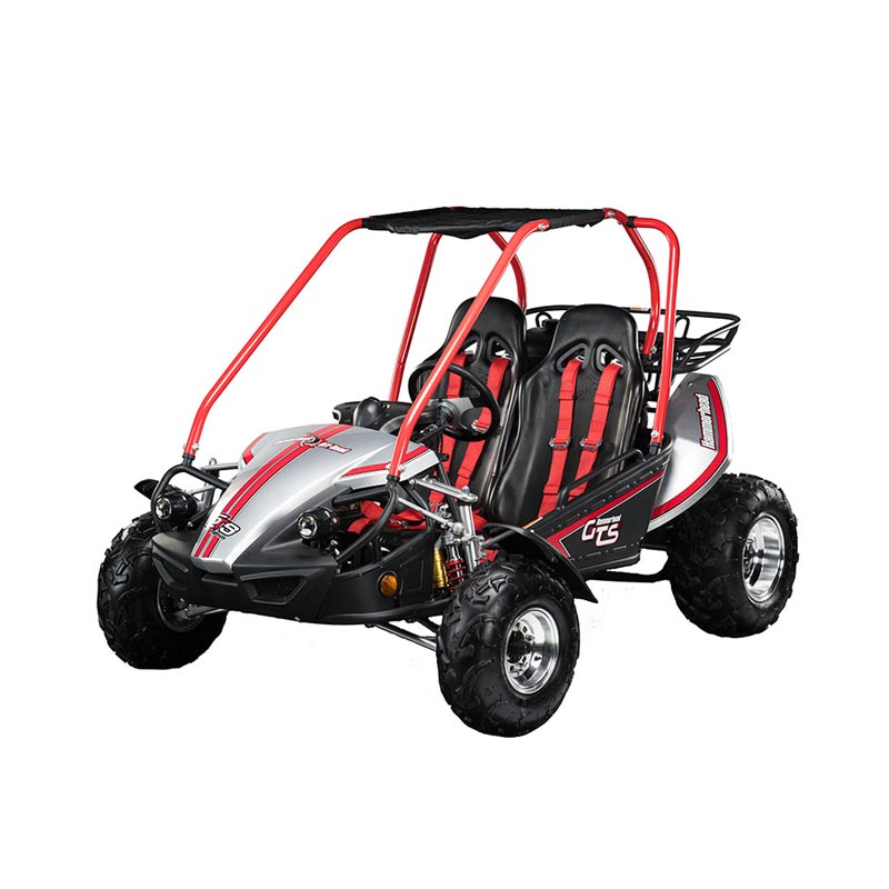 Hammerhead gts150 platinum special-edition buggy
